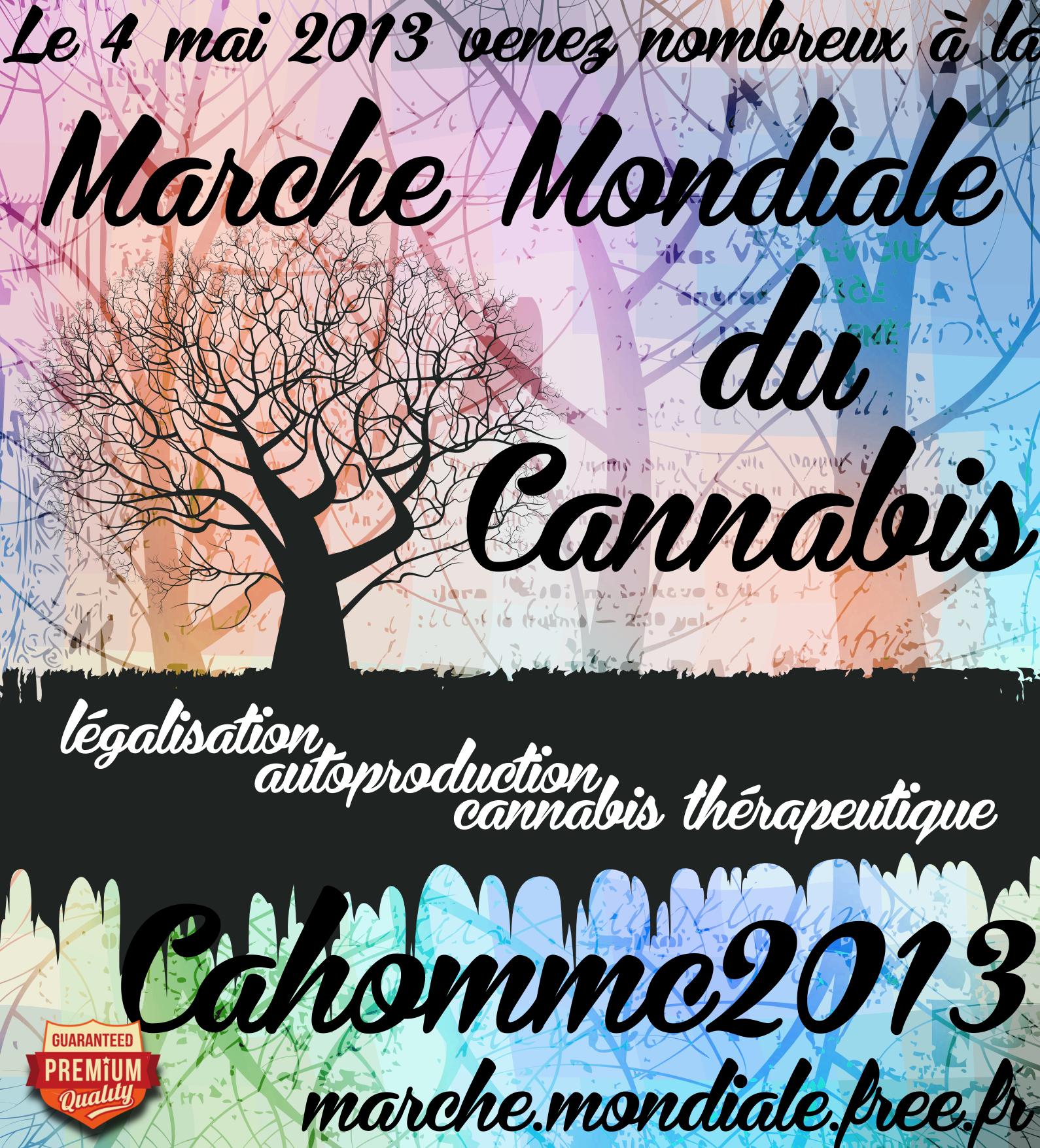 Affiche MMC 2013