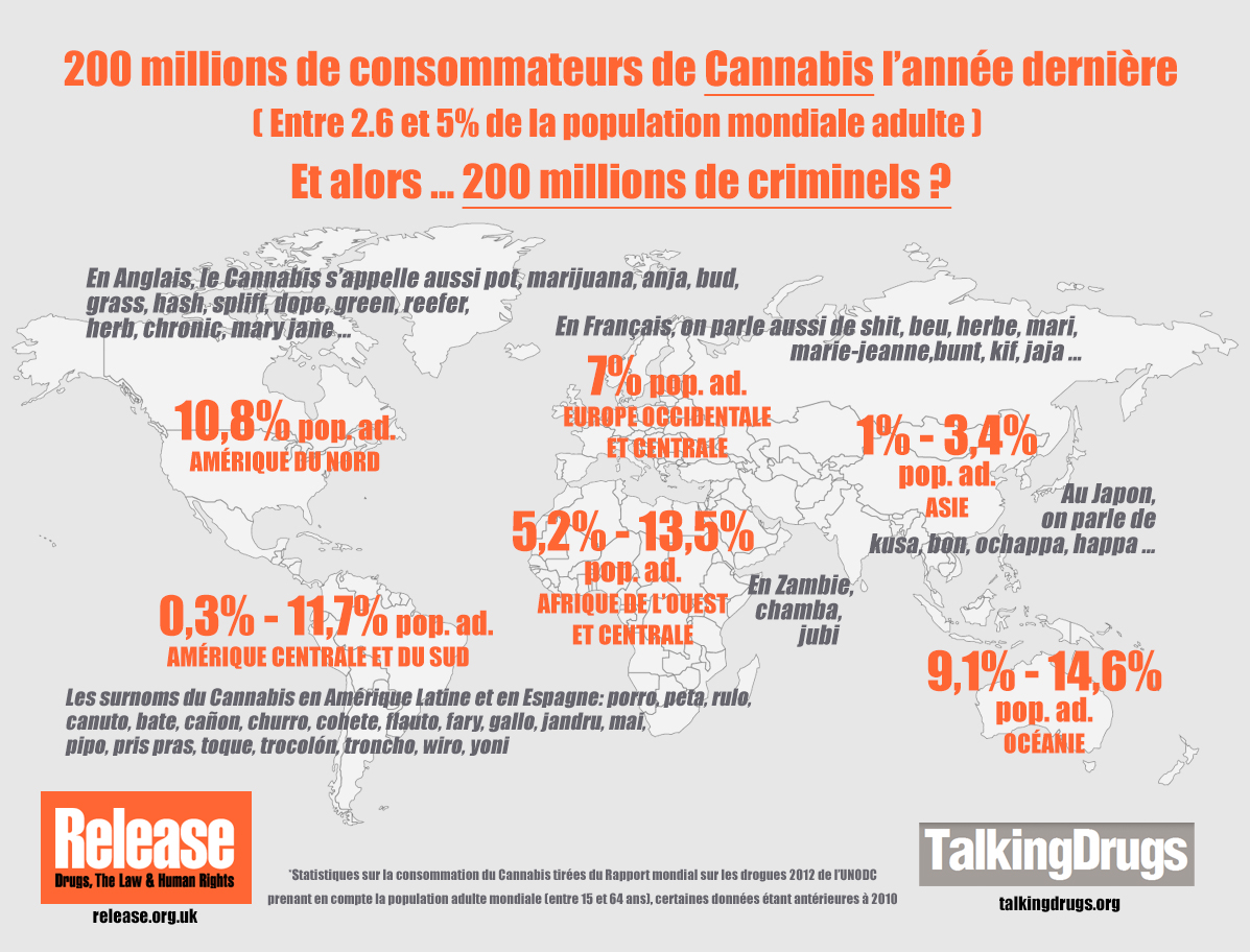 Infographie Cannabis