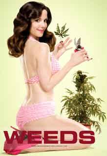 Weeds jardinage