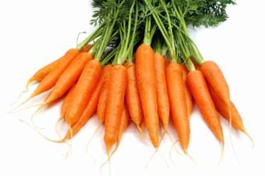 carottes_orange_legumes[1]