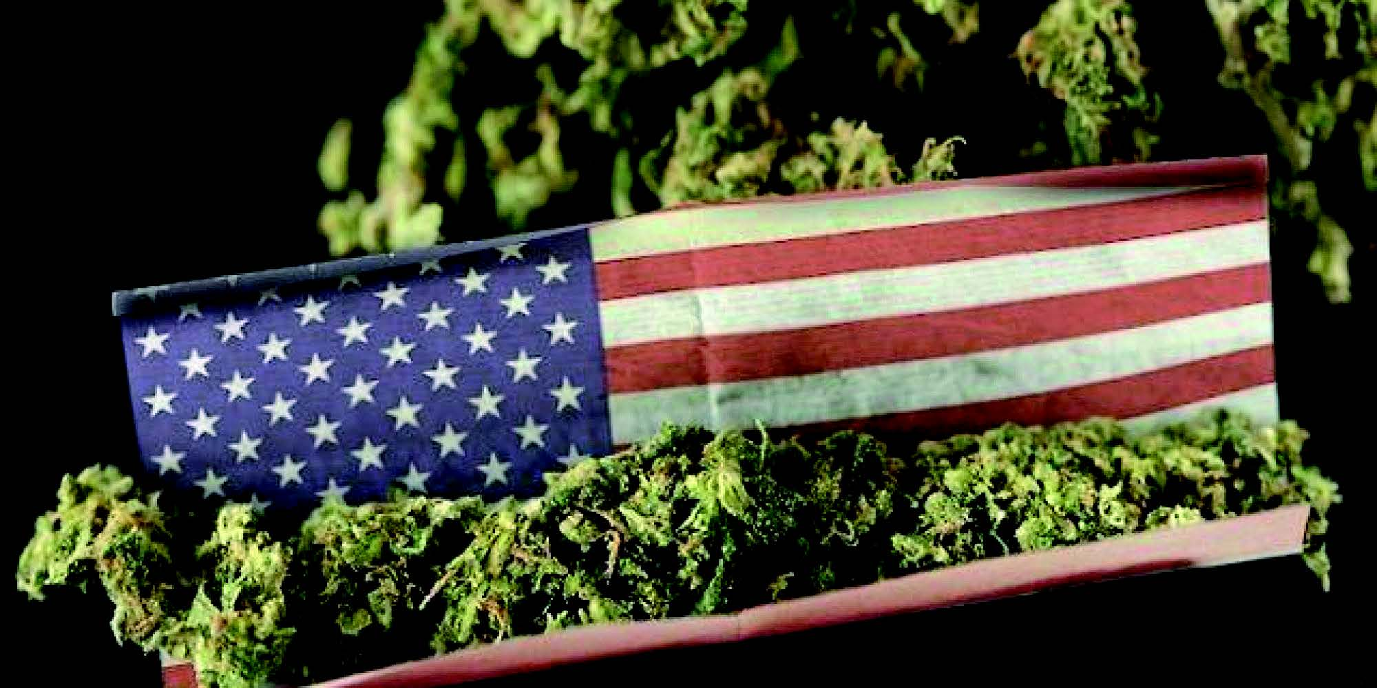 asud-journal-54 USA cannabis
